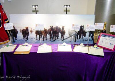 decor calgary events fundraiser tiny footprints TELUS SPARK 16