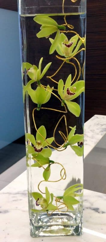 office flowers Cymbidium on Wire FFAR02972