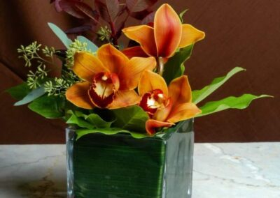 office flowers Fall Cymbidium FFAR02672