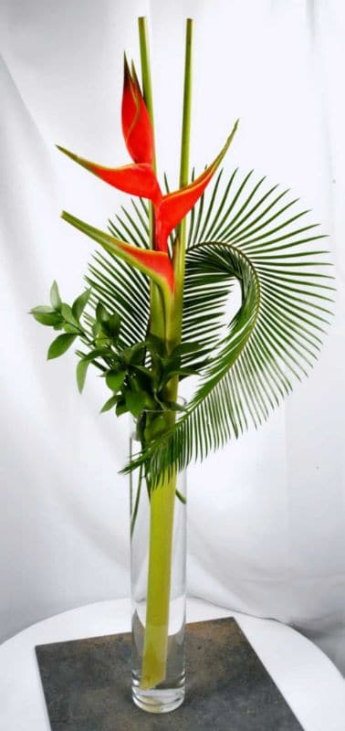 office flowers Heliconia and Palm FFAR01972